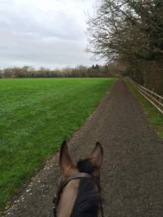 Gallop Track just under 1KM